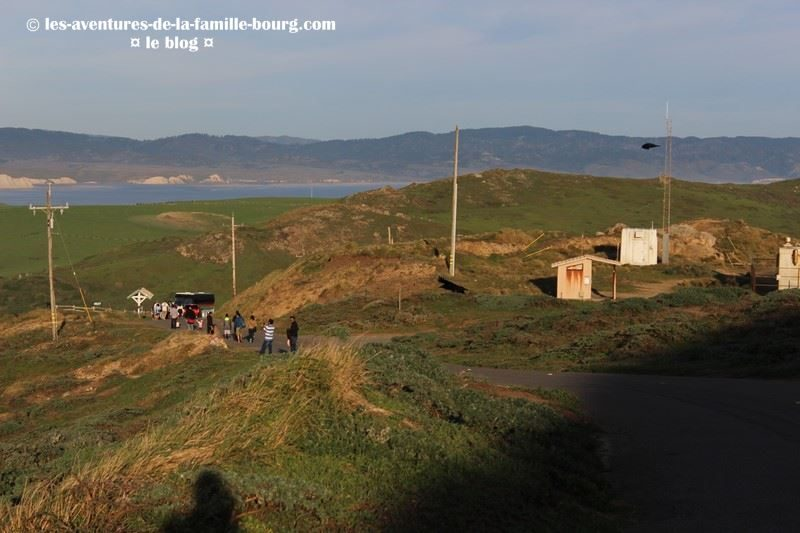 point-reyes-lighthouse (19)