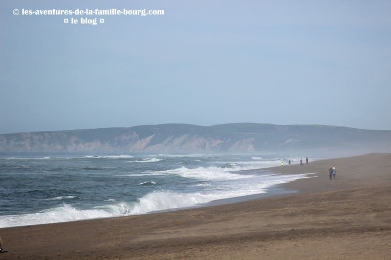 point-reyes-south-beach (2)