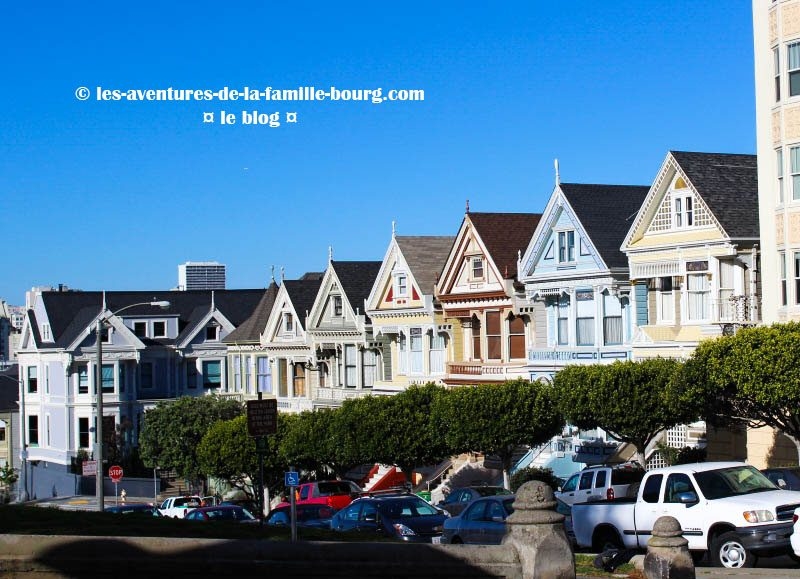 paintedladies copy